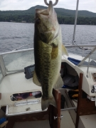 Lake George Smallmouth Hunter 2