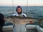 Ms Fish Striper