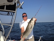 Hunter 2 Striper