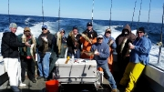 Monger Cod trip April 2015