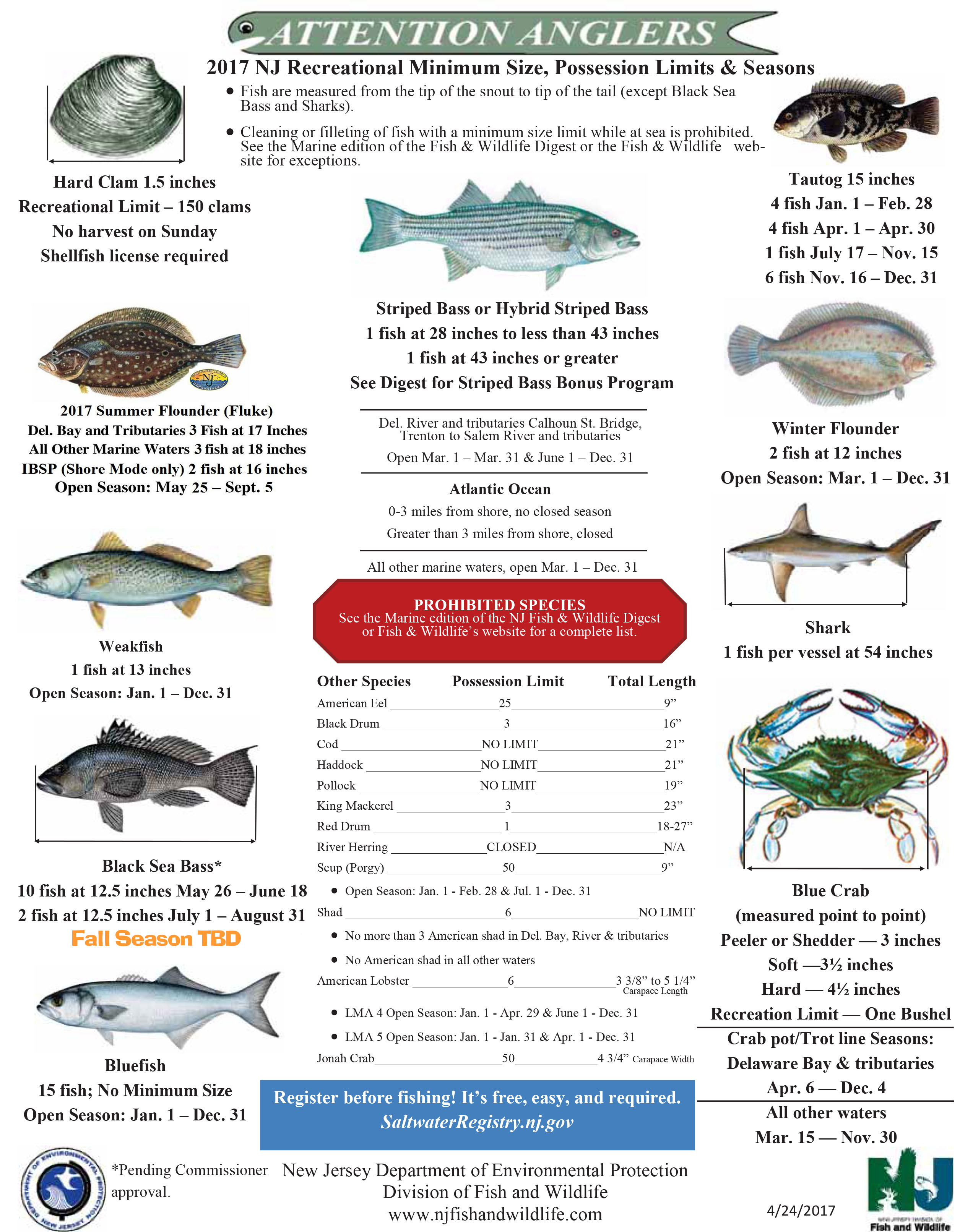 Nj saltwater fisherman your 1 source for fishing in nj for Nys fishing seasons