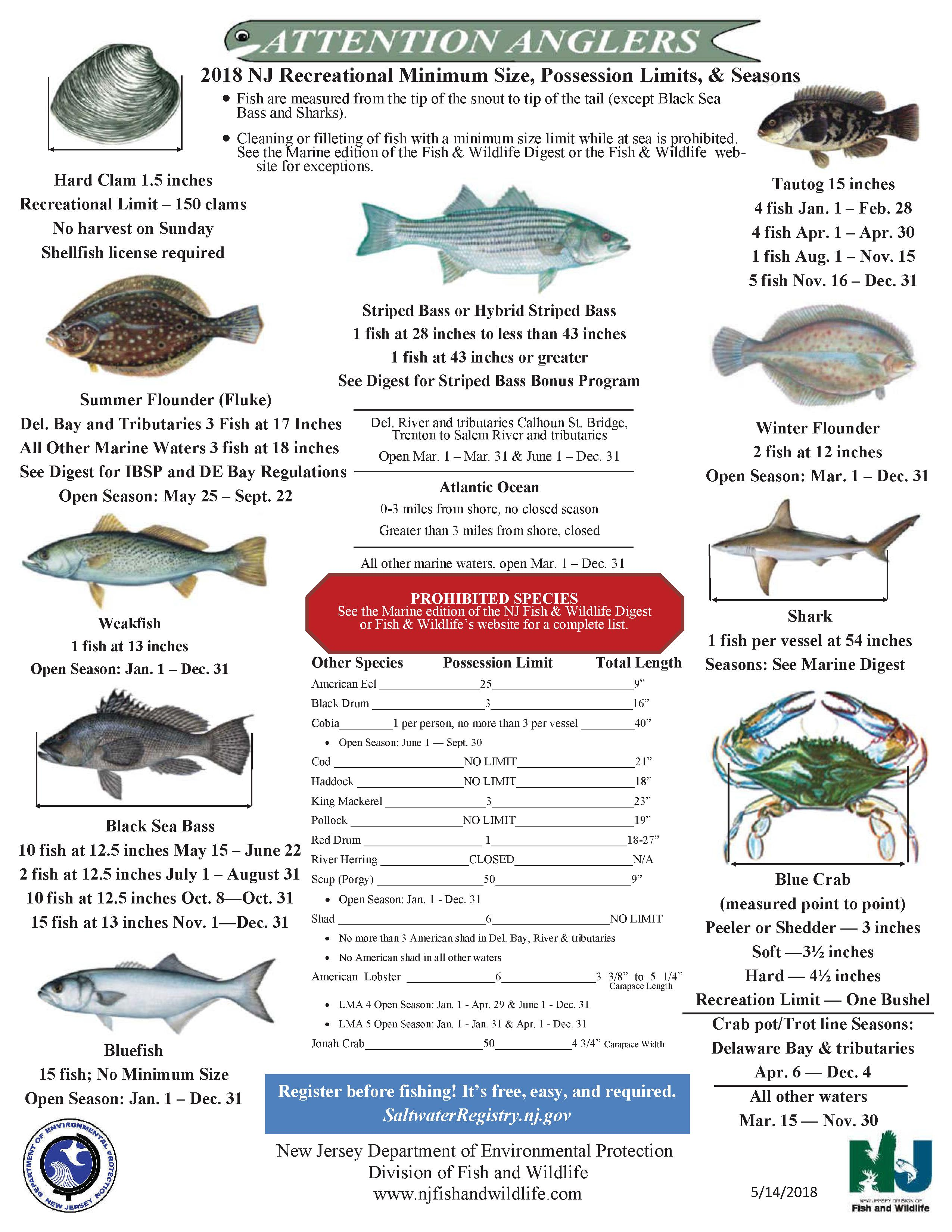 2018 Nj Saltwater Fishing Regulations Nj Saltwater Fisherman