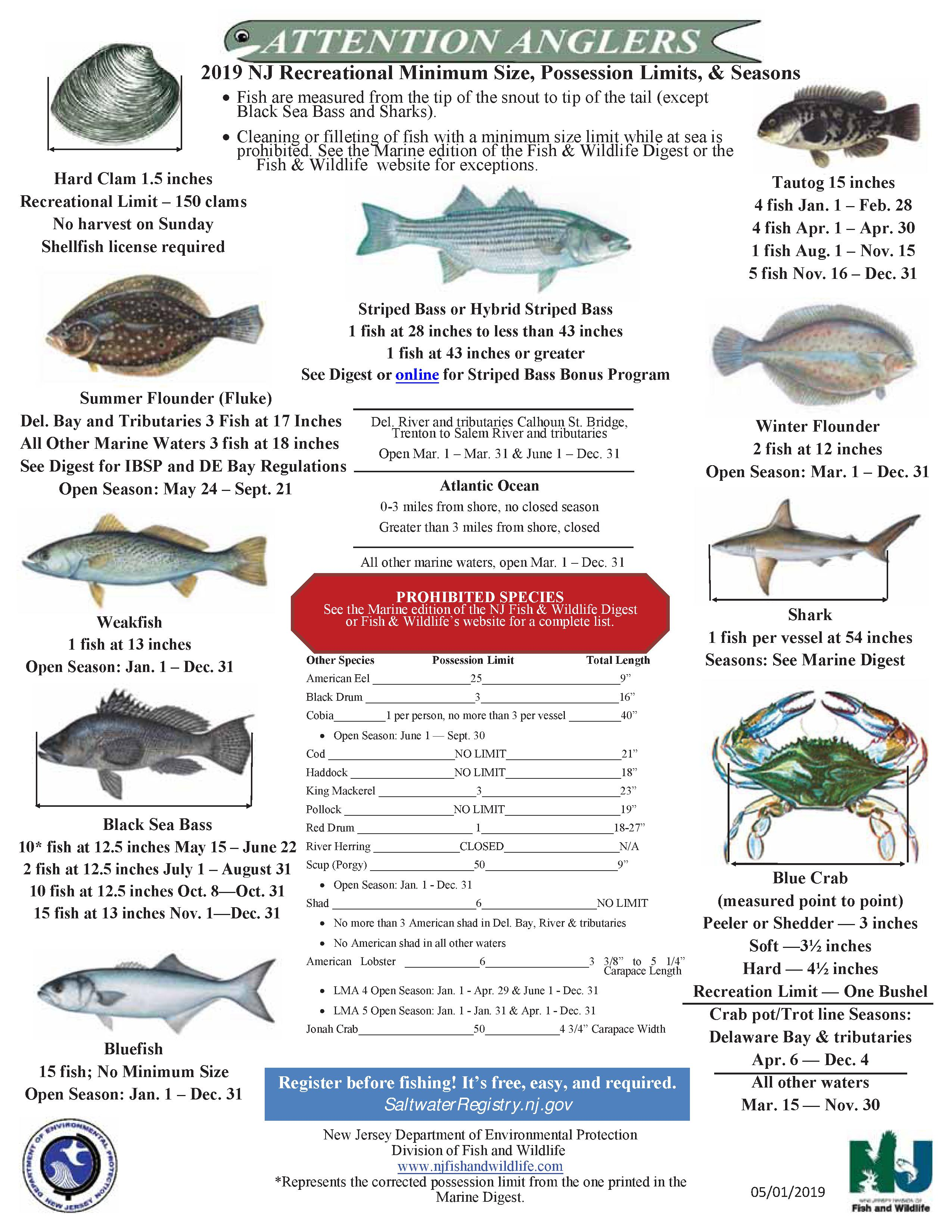 Fishing News | NJ Saltwater Fisherman - Your #1 Source For